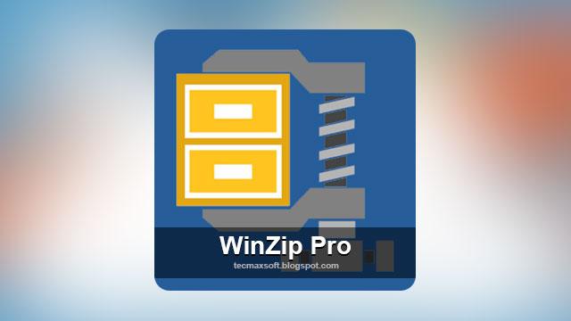 winzip 21 pro Archives